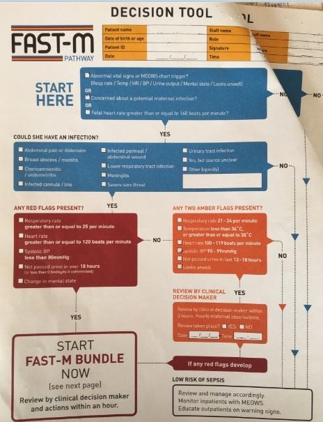 FAST-M decision tool edited